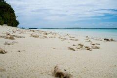 在海滩的珊瑚,马尔代夫, Ari环礁 免版税库存图片