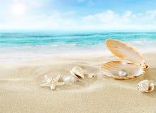 在海滩的珍珠 免版税图库摄影