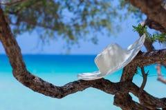 在海滩的白色帽子 免版税库存照片