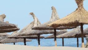 在海滩的盖的伞 影视素材