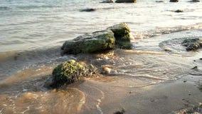 在海滨的石头 股票视频
