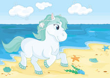 在海滩的童话逗人喜爱的马 库存照片