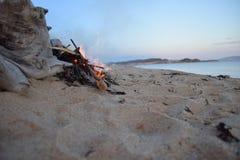 在海滨的篝火 库存照片