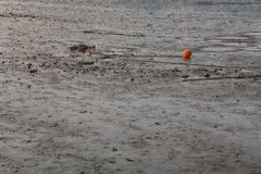 在海滩的红色橙色浮体在低潮期间 免版税库存照片
