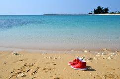 在海滩的红色鞋子 免版税库存图片