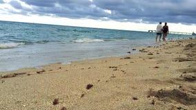 在海滩的美丽的海洋水在迈阿密 影视素材