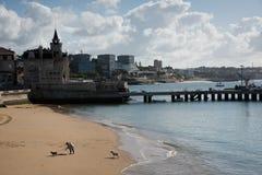 在海滩的老妇人走的狗 免版税图库摄影
