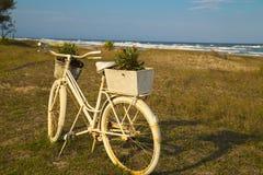 在海滩的老白色自行车 库存照片