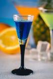 在海滩的蓝色异乎寻常的饮料与棕榈在背景中 库存图片