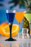 在海滩的蓝色异乎寻常的饮料与棕榈在背景中 库存照片