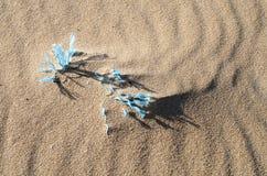 在海滩的蓝色绳索 库存图片