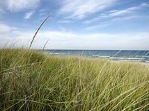 在海滩的虚张声势与沙丘草 免版税库存图片