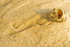 在海滩的蜗牛 库存图片