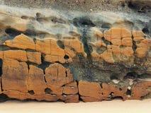 在海滩的被风化的岩石 库存照片
