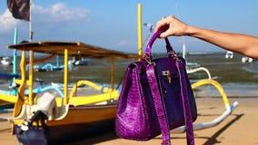 在海滩的豪华snakeskin Python袋子热带巴厘岛,印度尼西亚 股票录像