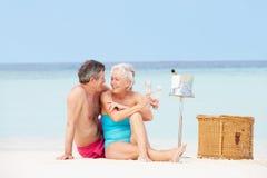 在海滩的资深夫妇与豪华香宾野餐 免版税库存图片