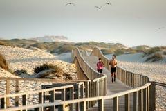 在海滩的赛跑者 库存照片