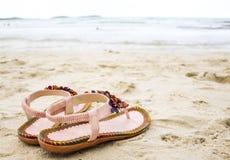 在海滩的逗人喜爱的触发器。 免版税库存照片