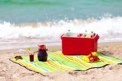 在海滩的野餐 免版税库存图片