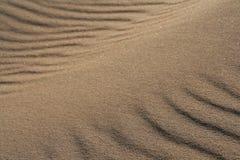 在海滩13的金黄沙子 免版税库存照片
