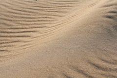 在海滩14的金黄沙子 免版税库存照片