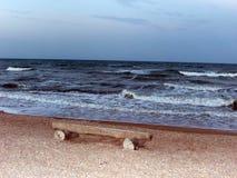 在海滩的长凳 免版税库存图片