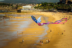 在海滩的风筝飞行 库存图片