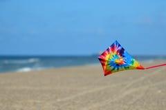 在海滩的风筝 免版税库存图片