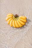 在海滩的香蕉 免版税图库摄影