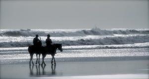 在海滩的马骑术 图库摄影