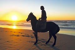 在海滩的马骑术 免版税库存照片