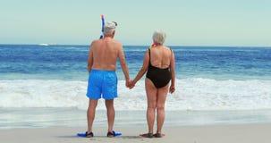 在海滩的高级夫妇 影视素材