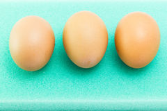 在海绵的鸡蛋 免版税库存照片