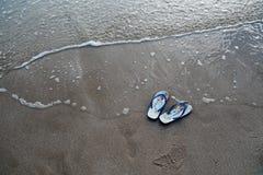 在海滩的鸭脚板 免版税库存照片