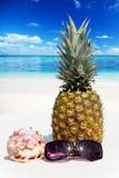 在海滩的整个菠萝水果摊 免版税库存图片