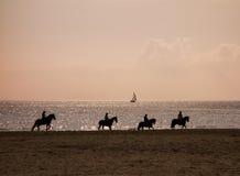 在海滩的4个马骑术剪影 免版税库存图片