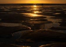 在海滩的水坑在日落 免版税库存图片