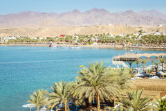在海滩的2月天在Sharm El谢赫 免版税库存图片