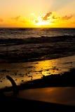 在海滩的水橇板 库存图片