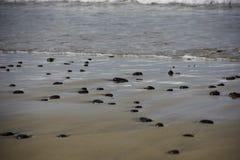 在海滩的黑石头 免版税图库摄影