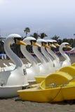 在海滩的水自行车拉帕尔马岛 免版税库存照片