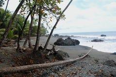 在海滩的绿色岩石 图库摄影