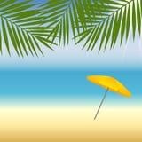 在海滩的黄色遮阳伞在棕榈树下 免版税库存照片