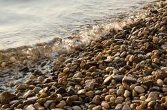 在海滩的Peblles 免版税库存图片