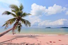 在海滩的Sailer 免版税库存图片