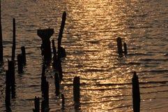 在海洋背景的浮动木头 库存图片