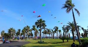 在海滩节日期间的五颜六色的风筝 库存图片