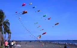 在海滩节日期间的五颜六色的风筝 库存照片