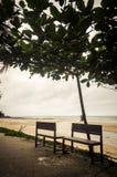 在海滩边路的长凳  库存照片