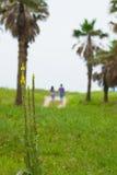 在海滩附近的愉快的夫妇戏剧, 免版税库存照片
